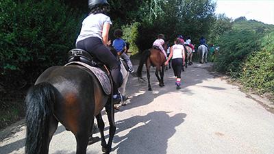 Punta Galea equitación