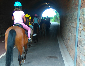 Paseos caballo busdin Zaldia